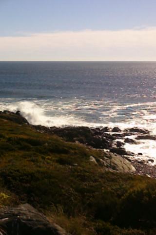 Cobblestone waves