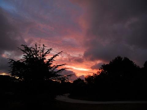 Sunset Whitemark