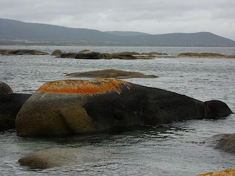 Whale rock.JPG