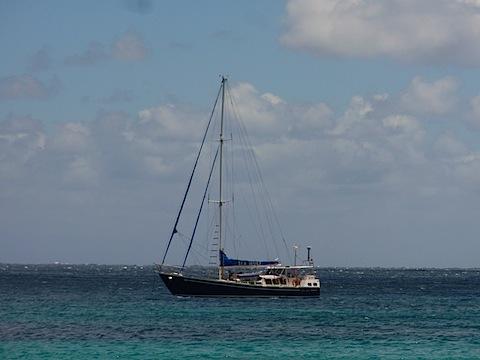 Sea Wolf at anchor, Garden Cove