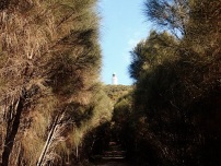 Lighthouse from the trail