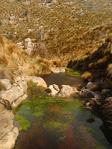 Little Squally Creek