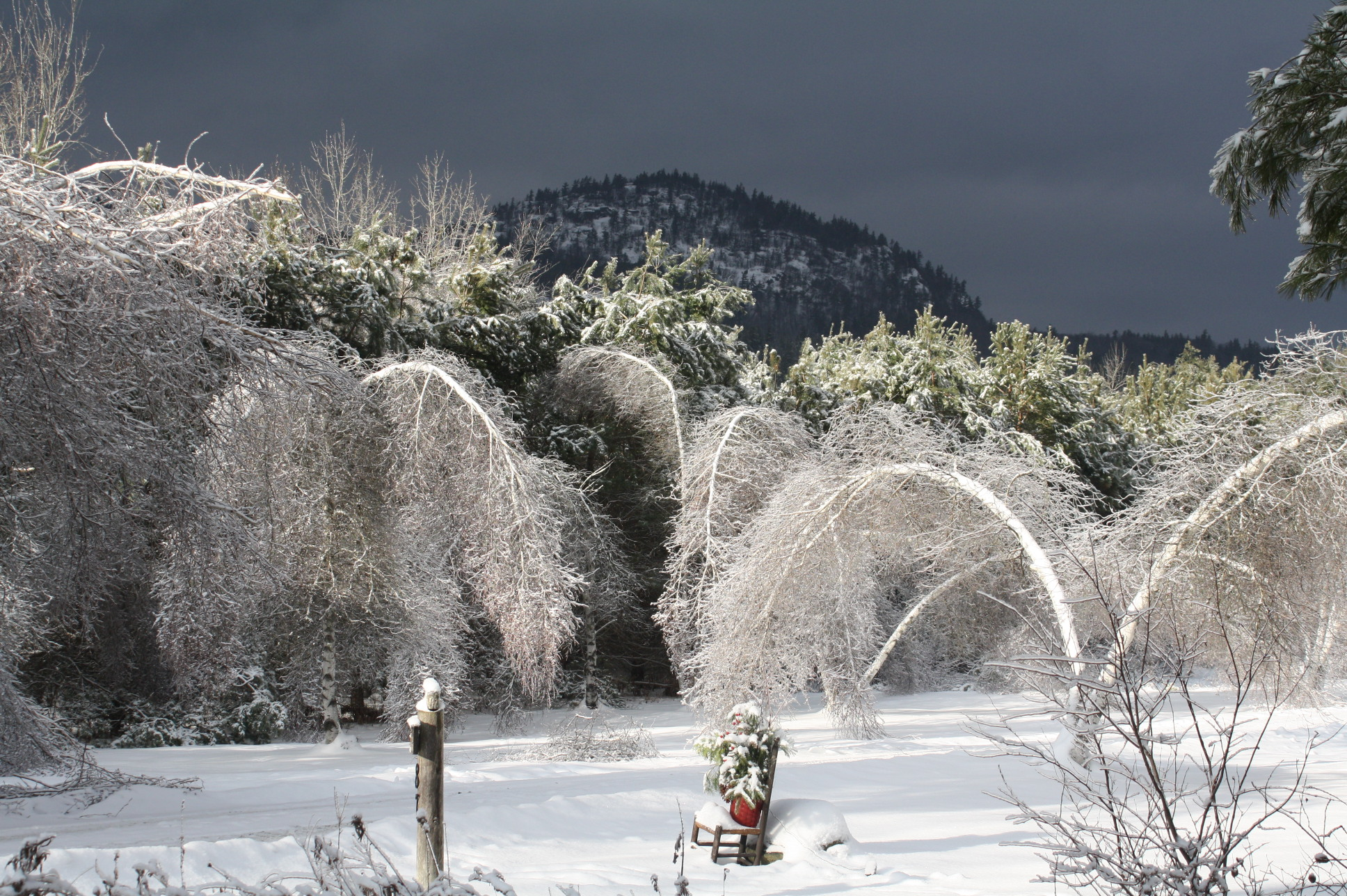 2013-12-28 Ice storm winter 2013 011